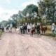 Schüler mit Lamas und alpakas